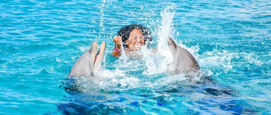 Dolphin Swim at Dolphin Academy Curaçao
