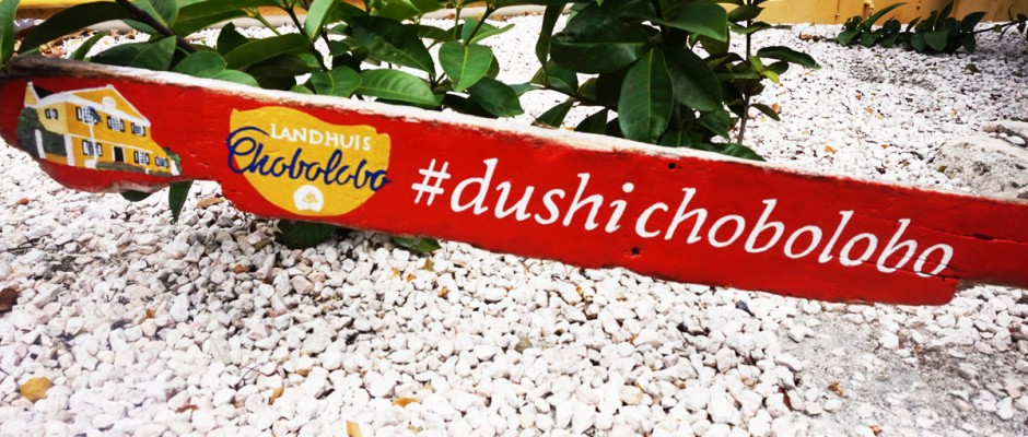 A Sign of the Curaçao Word Dushi